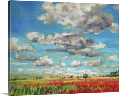 Summer Clouds and Poppies