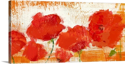 The Poppies Blow