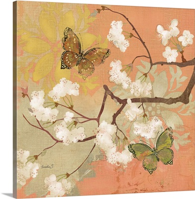 Valencia Butterflies