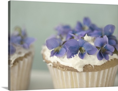 Violet Cupcake B