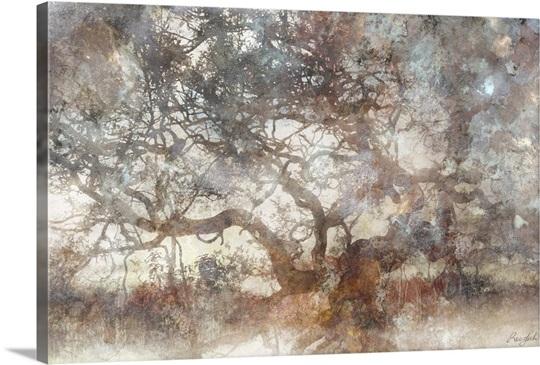 Wisdom Tree Wall Art, Canvas Prints, Framed Prints, Wall Peels ...