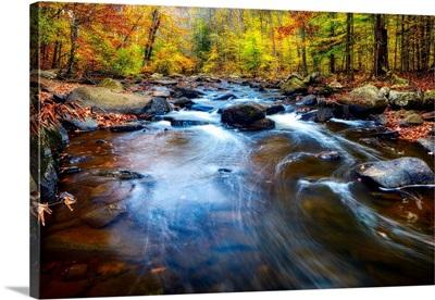 Black River, New Jersey