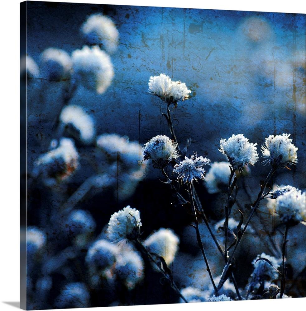 Blue Bouquet Wall Art Canvas Prints Framed Prints Wall Peels Great Big Canvas