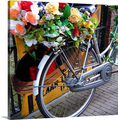Dutch flower power
