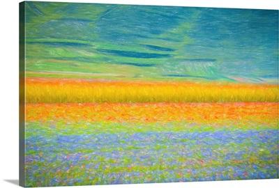 Field Colors