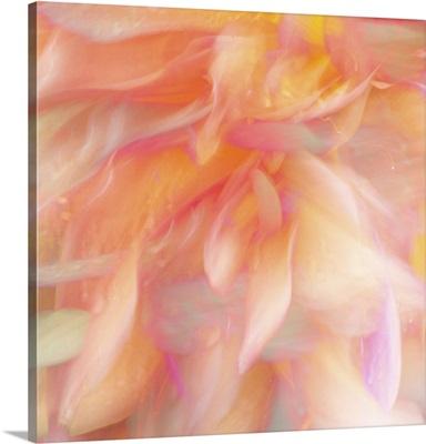 Floral Flames II