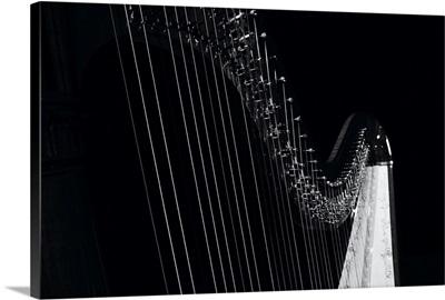 Musical Instruments, Harp II