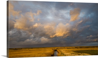 Norfolk Skies
