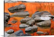 Paint it Orange I