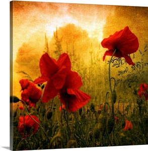 Philippe Sainte Laudy Wall Art Canvas Prints Philippe Sainte Laudy Panoramic Photos Posters Photography Wall Art Framed Prints Amp More Great Big Canvas
