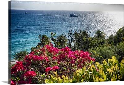Saint Thomas Coastal Scenic