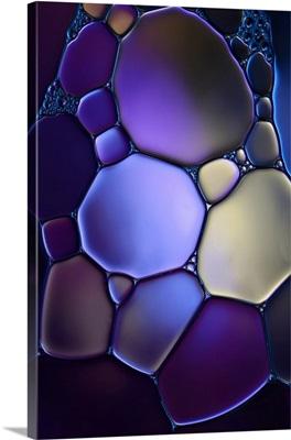 Shapes In Purple