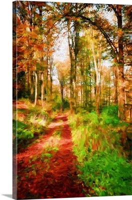 Take A Path In Autumn