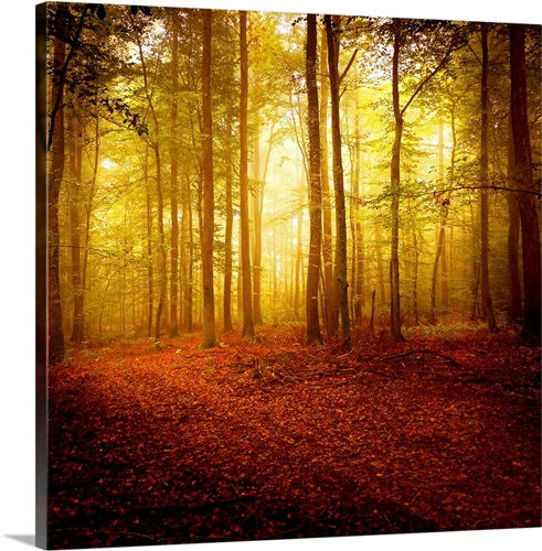 The Smell of Autumn Wall Art, Canvas Prints, Framed Prints, Wall ...
