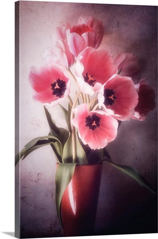 Tulip Bouquets Wall Art Canvas Prints Framed Prints Wall Peels Great Big Canvas