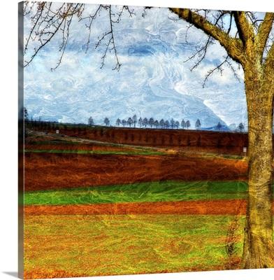 Van Goghs Home