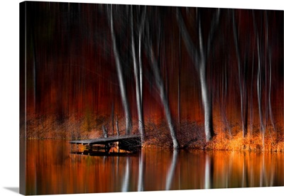 Warm Reflections