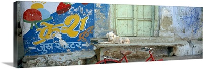 Advertisement painted on the wall of a building, Udaipur, Rajasthan, India