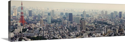 Aerial view of a city, Mori Tower, Roppongi Hills, Tokyo Prefecture, Japan