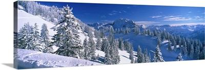 Alpine Scene, Bavaria, Germany
