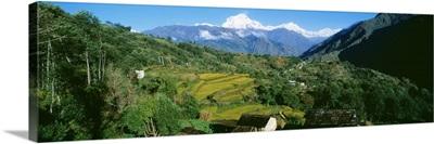Annapurna Reg Nepal