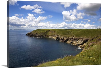 Ardmore Head, County Waterford, Ireland