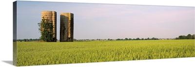 Arkansas, View of grain silos in a field