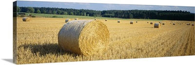 Bales of Hay Southern Germany