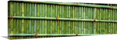 Bamboo Enclosure Ginkakuji Temple (Sakyo-ku) Kyoto Japan