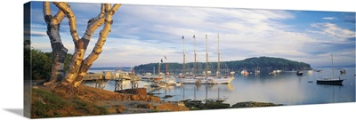 Bar Harbor ME