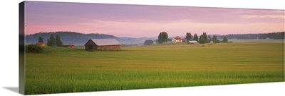 Barn and wheat field across farmlands at dawn, Finland