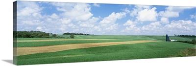 Barn in a field, Wisconsin
