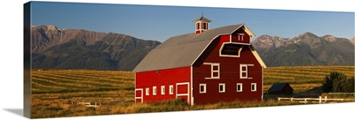 Barn in a field with Wallowa Mountains in background, Enterprise, Oregon