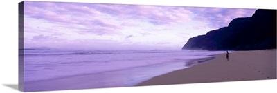 Beach HI