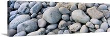 Beach Rocks Acadia National Park ME