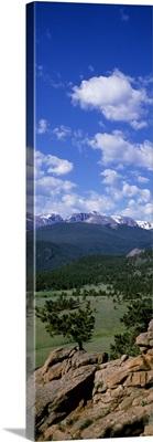 Beaver Meadows Rocky Mt National Park CO