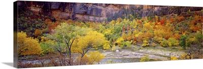 Big Bend in fall, Zion National Park, Utah