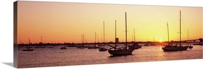 Boats in the Atlantic ocean, Sarasota Bay, Gulf of Mexico, Sarasota, Florida