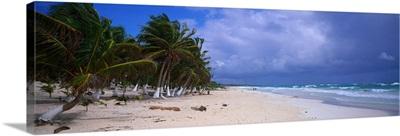 Caribbean Beach Quintana Roo Mexico