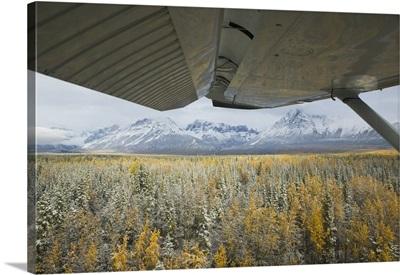 Close-up of a plane wing over a forest, Wrangell Mountains, Saint Elias National Park, Wrangell, Alaska