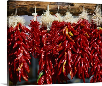 Close-up of bunches of chilli peppers hanging on a stall, Taos, New Mexico