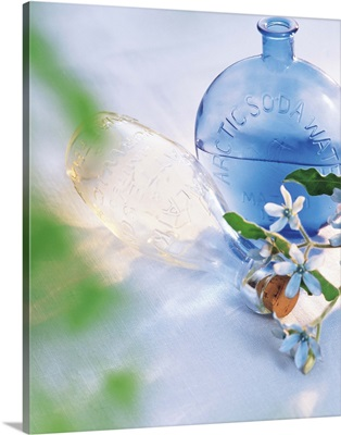 Close View of a Glass Bottle with Flowers