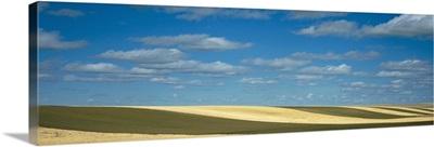 Clouded sky over a striped field, Geraldine, Montana