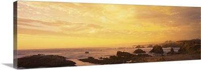 Coastline Mendocino CA