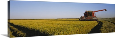 Combine in a rice field, Glenn County, California
