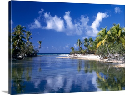 Cove Polynesia