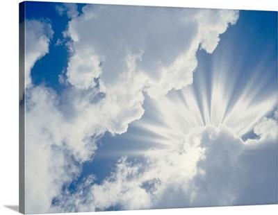 Cumulus clouds in the sky