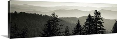 Dawn Great Smoky Mountains National Park Cherokee NC
