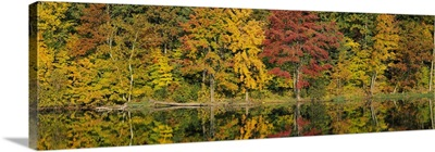 Fall Foliage Saratoga Springs NY