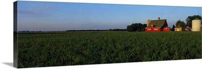 Farm Fields Stelle IL